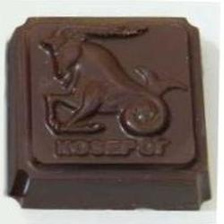 Молд для шоколада и мастики Зодиак-Козерог 1