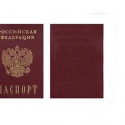 Вафельная картинка Паспорт 1